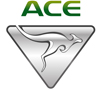 ACE Electric Vehicles